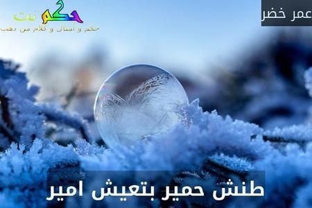 طنش حمير بتعيش امير-عمر خضر