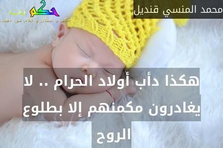 هكذا دأب أولاد الحرام .. لا يغادرون مكمنهم إلا بطلوع الروح -محمد المنسي قنديل