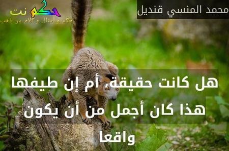 هل كانت حقيقة، أم إن طيفها هذا كان أجمل من أن يكون واقعا -محمد المنسي قنديل