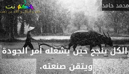 الكل ينجح حين يشغله أمر الجودة ويتقن صنعته. -محمد حامد