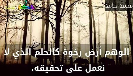 الوهم أرض رخوة كالحلم الذي لا نعمل على تحقيقه. -محمد حامد
