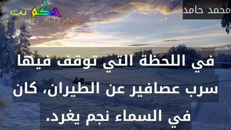 في اللحظة التي توقف فيها سرب عصافير عن الطيران، كان في السماء نجم يغرد. -محمد حامد