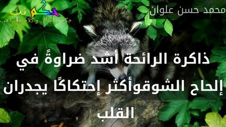ذاكرة الرائحة أشد ضراوةً في إلحاح الشوقوأكثر إحتكاكًا يجدران القلب -محمد حسن علوان