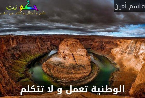 الوطنية تعمل و لا تتكلم-قاسم أمين