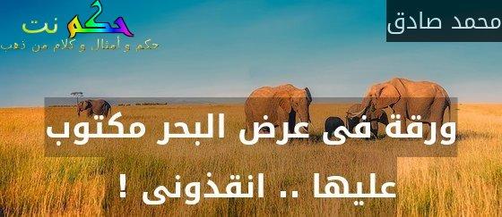 ورقة فى عرض البحر مكتوب عليها .. انقذونى ! -محمد صادق