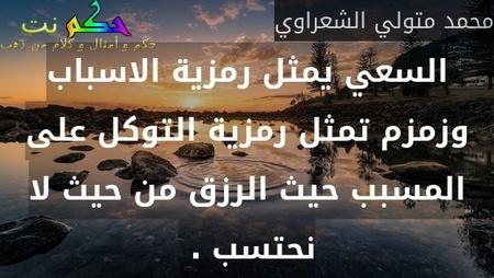السعي يمثل رمزية الاسباب وزمزم تمثل رمزية التوكل على المسبب حيث الرزق من حيث لا نحتسب . -محمد متولي الشعراوي