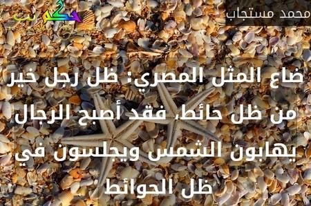 ضاع المثل المصري: ظل رجل خير من ظل حائط، فقد أصبح الرجال يهابون الشمس ويجلسون في ظل الحوائط -محمد مستجاب