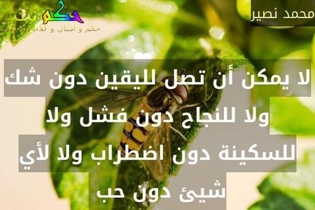 لا يمكن أن تصل لليقين دون شك ولا للنجاح دون فشل ولا للسكينة دون اضطراب ولا لأي شيئ دون حب -محمد نصير