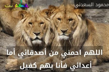 اللهم احمني من أصدقائي أما أعدائي فأنا بهم كفيل -محمود السعدني