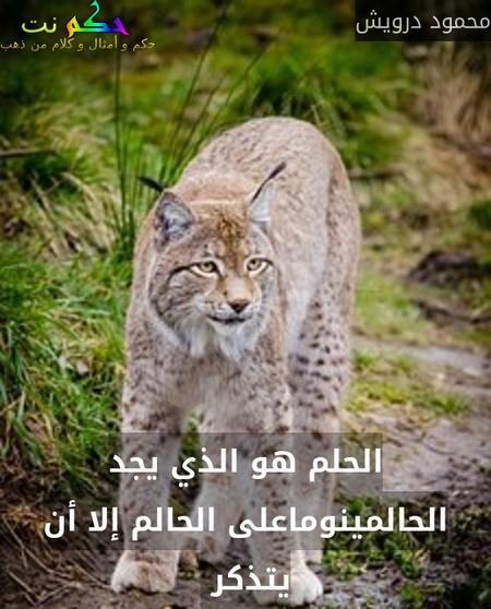 الحلم هو الذي يجد الحالمينوماعلى الحالم إلا أن يتذكر -محمود درويش