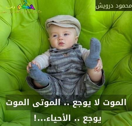 الموت لا يوجع .. الموتى الموت يوجع .. الأحياء...! -محمود درويش