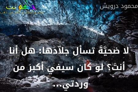 لا ضحيَّةَ تسأل جلاّدَها: هل أنا أنتَ؟ لو كان سيفيَ أكبرَ من وردتي... -محمود درويش