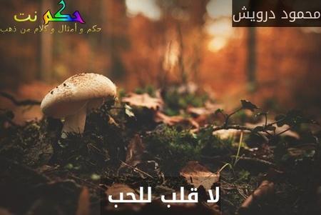 لا قلب للحب -محمود درويش