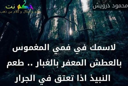لاسمك في فمي المغموس بالعطش المعفر بالغبار .. طعم النبيذ اذا تعتق في الجرار -محمود درويش
