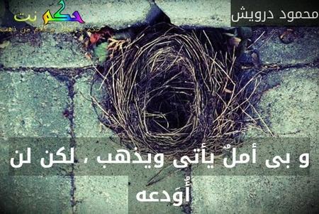 و بى أملٌ يأتى ويذهب ، لكن لن أُوَدعه -محمود درويش