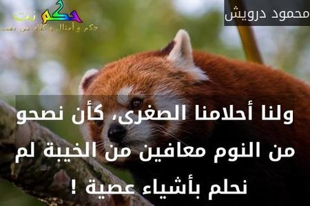 ولنا أحلامنا الصغرى، كأن نصحو من النوم معافين من الخيبة لم نحلم بأشياء عصية ! -محمود درويش