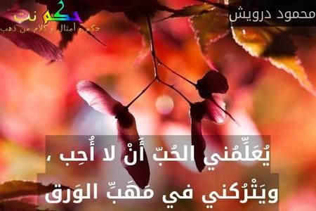 يُعَلِّمُني الحُبّ أَنْ لا أُحِب ، ويَتْرُكني في مَهَبِّ الوَرق -محمود درويش