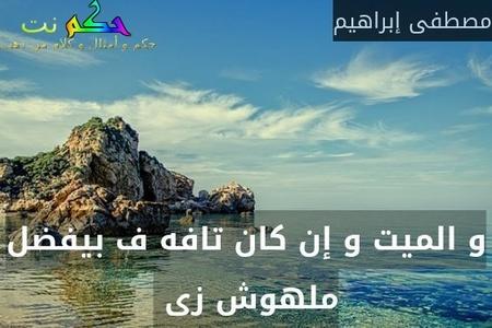 و الميت و إن كان تافه ف بيفضل ملهوش زى -مصطفى إبراهيم
