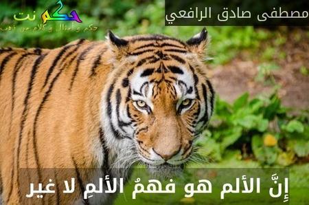 إِنَّ الألم هو فهمُ الألمِ لا غير -مصطفى صادق الرافعي