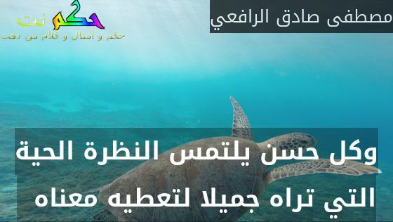 وكل حسن يلتمس النظرة الحية التي تراه جميلا لتعطيه معناه  -مصطفى صادق الرافعي
