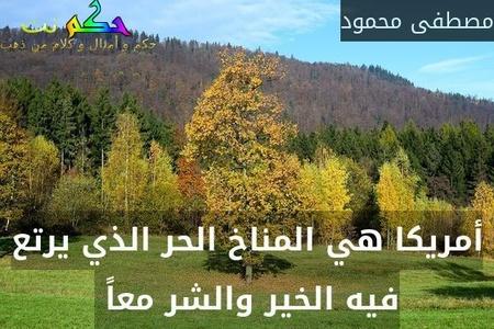 أمريكا هي المناخ الحر الذي يرتع فيه الخير والشر معاً -مصطفى محمود