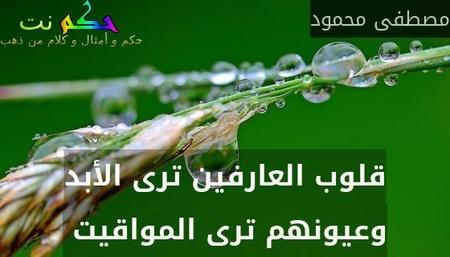 قلوب العارفين ترى الأبد وعيونهم ترى المواقيت -مصطفى محمود