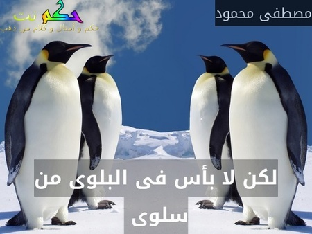 لكن لا بأس فى البلوى من سلوى -مصطفى محمود