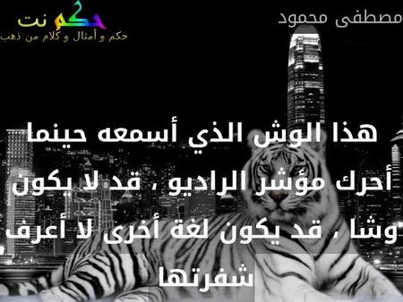 هذا الوش الذي أسمعه حينما أحرك مؤشر الراديو ، قد لا يكون وشا ، قد يكون لغة أخرى لا أعرف شفرتها -مصطفى محمود