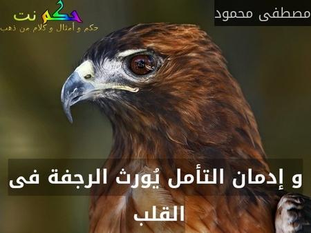 و إدمان التأمل يُورث الرجفة فى القلب -مصطفى محمود