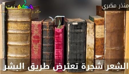 الشِعر شجرة تعترض طريق البشر -منذر مصري