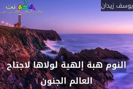 النوم هبة إلهية لولاها لاجتاح العالم الجنون-يوسف زيدان