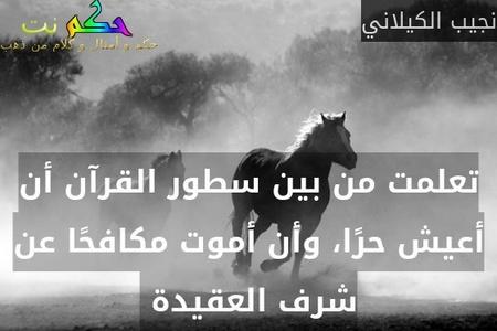 تعلمت من بين سطور القرآن أن أعيش حرًا، وأن أموت مكافحًا عن شرف العقيدة -نجيب الكيلاني