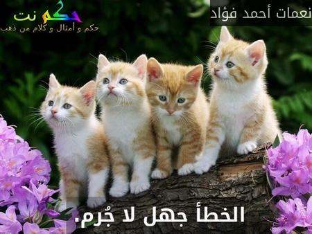 الخطأ جهل لا جُرم. -نعمات أحمد فؤاد