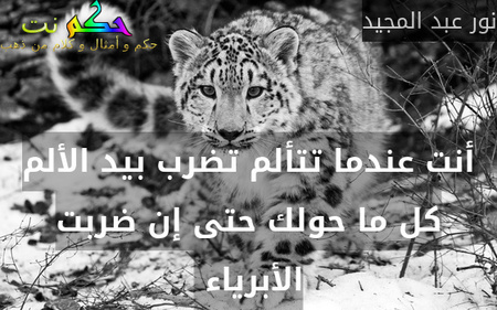 أنت عندما تتألم تضرب بيد الألم كل ما حولك حتى إن ضربت الأبرياء -نور عبد المجيد