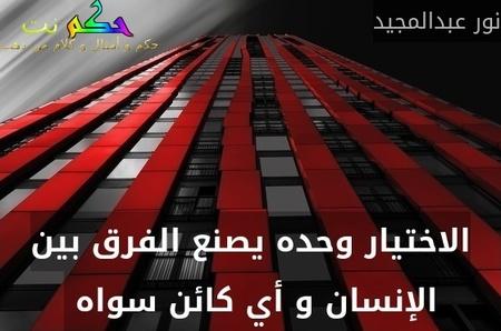 الاختيار وحده يصنع الفرق بين الإنسان و أي كائن سواه -نور عبدالمجيد