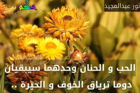 الحب و الحنان وحدهما سيبقيان دوما ترياق الخوف و الحيرة .. -نور عبدالمجيد