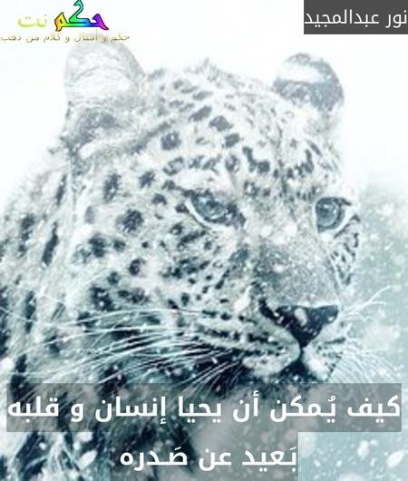 كيف يُـمكن أن يحيا إنسان و قلبه بَـعيد عن صَـدره -نور عبدالمجيد