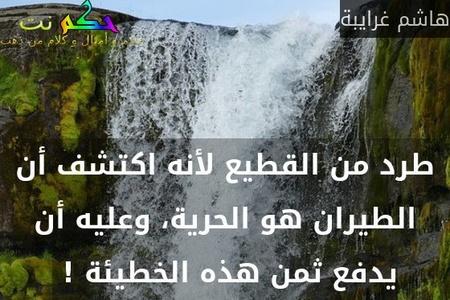 طرد من القطيع لأنه اكتشف أن الطيران هو الحرية، وعليه أن يدفع ثمن هذه الخطيئة ! -هاشم غرايبة