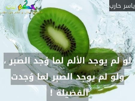لو لم يوجد الألم لما وُجد الصبر ، ولو لم يوجد الصبر لما وُجدت الفضيلة ! -ياسر حارب
