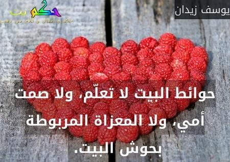حوائط البيت لا تعلّم، ولا صمت أمي، ولا المعزاة المربوطة بحوش البيت. -يوسف زيدان