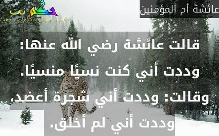 قالت عائشة رضي الله عنها: وددت أني كنت نسيًا منسيًا. وقالت: وددت أني شجرة أعضد، وددت أني لم أخلق.-عائشة أم المؤمنين