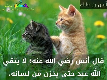 قال أنس رضي الله عنه: لا يتقي الله عبد حتى يخزن من لسانه.-أنس بن مالك