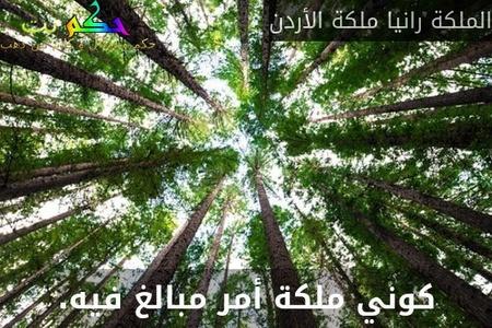 كوني ملكة أمر مبالغ فيه.-الملكة رانيا ملكة الأردن