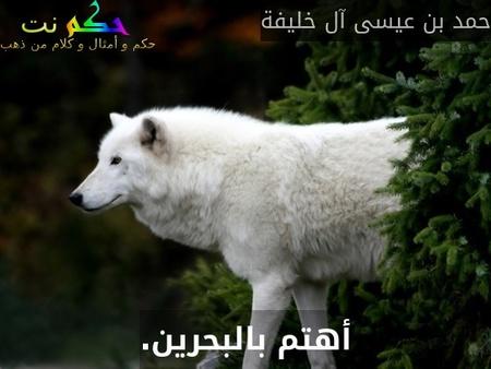أهتم بالبحرين.-حمد بن عيسى آل خليفة