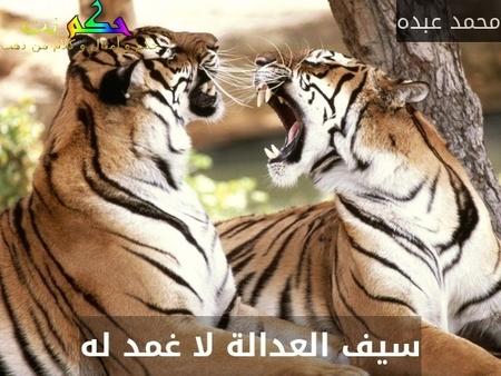 سيف العدالة لا غمد له-محمد عبده