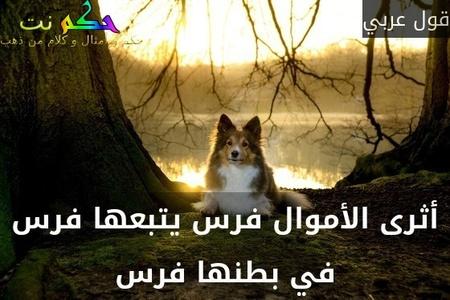 أثرى الأموال فرس يتبعها فرس في بطنها فرس-قول عربي
