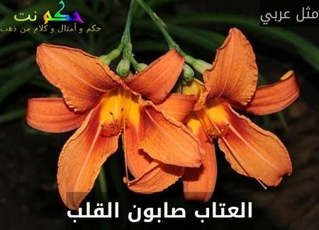 العتاب صابون القلب-مثل عربي