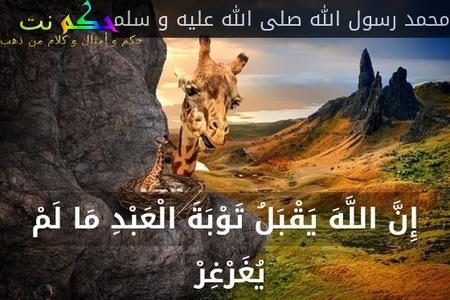 إِنَّ اللَّهَ يَقْبَلُ تَوْبَةَ الْعَبْدِ مَا لَمْ يُغَرْغِرْ -محمد رسول الله صلى الله عليه و سلم