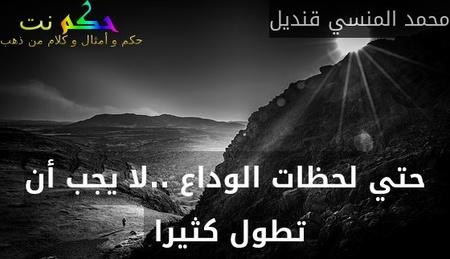 حتي لحظات الوداع ..لا يجب أن تطول كثيرا -محمد المنسي قنديل