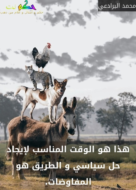 هذا هو الوقت المناسب لإيجاد حل سياسي و الطريق هو المفاوضات.-محمد البرادعي